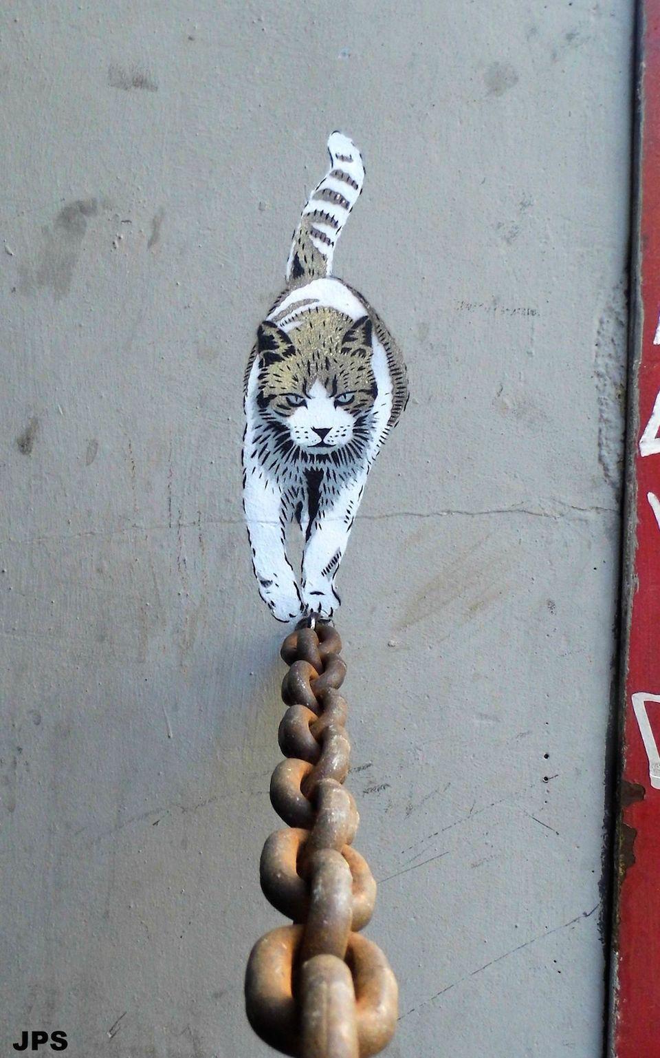 street-art-cat-by-jps-36756865